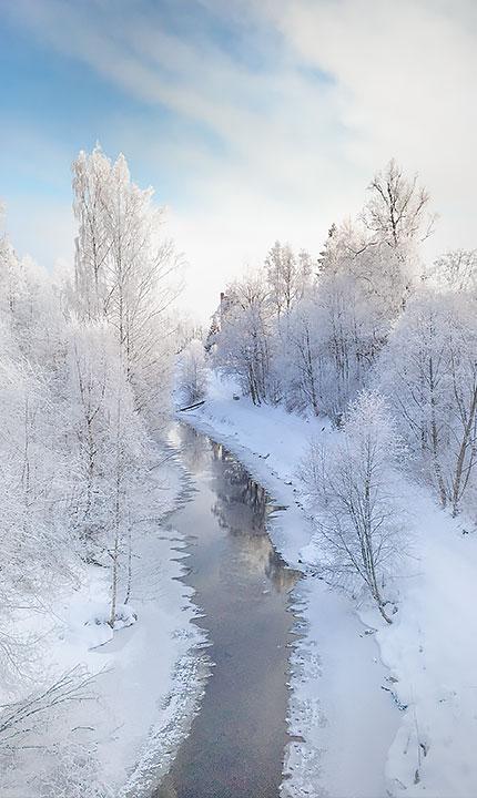 Talvimaisema